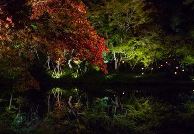Kodai-ji : le magnifique temple aux illuminations nocturnes