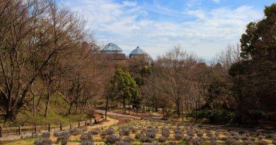Nunobiki, le jardin aromatique de Kobe