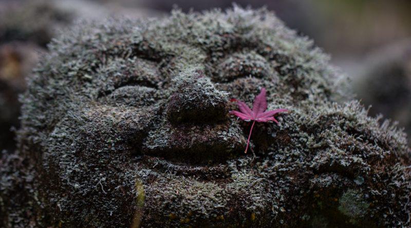 Otagi Nenbutsu-ji : le temple au 1200 étranges statues