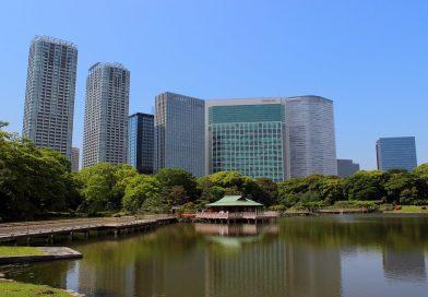 Hama-rikyu Onshi Teien : l'exceptionnel jardin de Tokyo