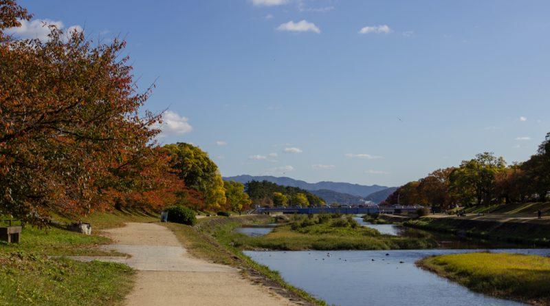 Du sanctuaire Kamigamo au Shimogamo, le long de la rivière Kamogawa à Kyoto (itinéraire)