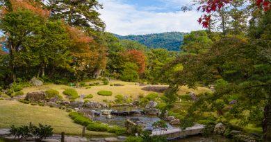 Murin-an, l'incroyable jardin aux mousses